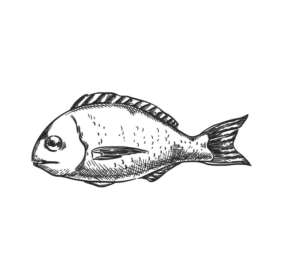 Me International - Fischzucht