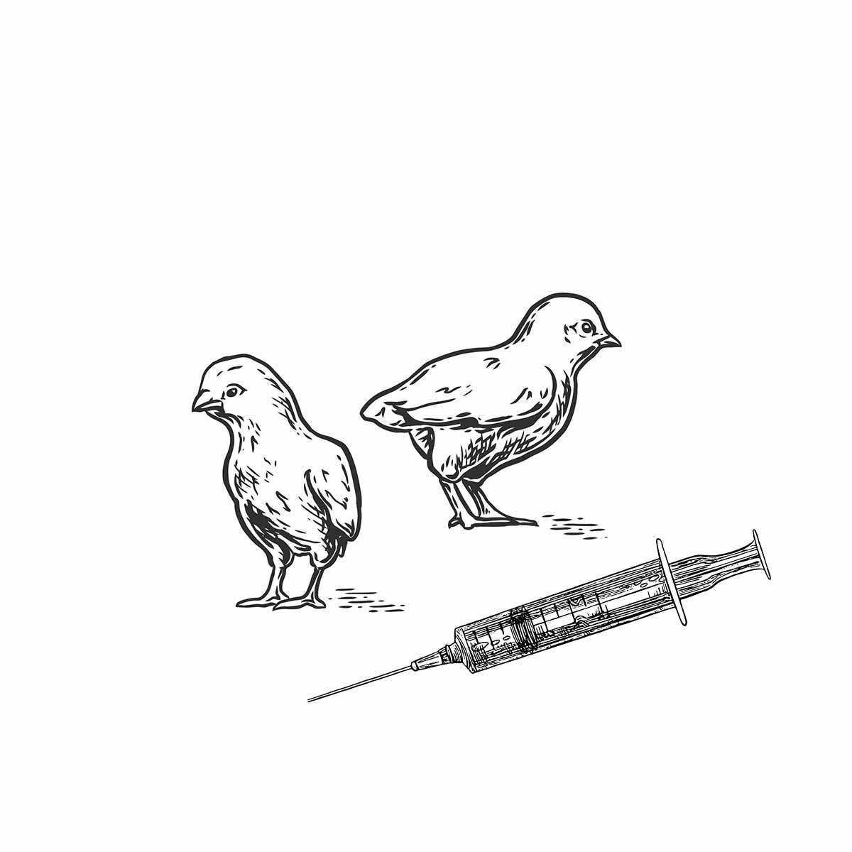 Me International - Impfgeräte für Geflügel